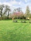 Spring park scene Stock Image