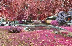 Spring park Trikala Greece Royalty Free Stock Photography