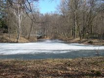 Spring park view with water. Ice melting on the pond in spring park Royalty Free Stock Photos