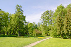Spring park with walkway Royalty Free Stock Image