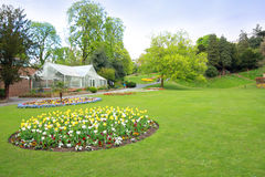 Spring park with yellow tulips, Richmond, England Stock Image