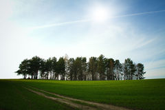 Spring in the parks and forests of Europe. Beautiful places in Europe Royalty Free Stock Photos