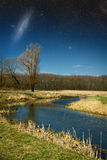 Spring in the parks and forests of Europe. Elements of this image furnished by NASA Stock Photography