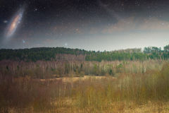 Spring in the parks and forests of Europe. Elements of this image furnished by NASA Royalty Free Stock Images