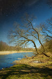 Spring in the parks and forests of Europe. Elements of this image furnished by NASA Stock Photo