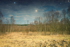 Spring in the parks and forests of Europe. Elements of this image furnished by NASA Stock Image