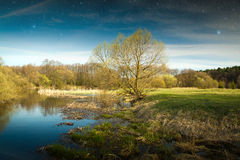Spring in the parks and forests of Europe. Elements of this image furnished by NASA Stock Photos