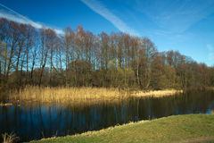 Spring in the parks and forests of Europe. Picturesque landscape Royalty Free Stock Photography