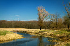 Spring in the parks and forests of Europe. Scenic spots of Europe Royalty Free Stock Image