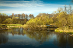 Spring in the parks and forests of Europe. Scenic spots of Europe Stock Photography