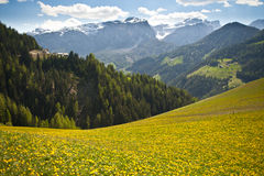 Spring Pastures In Dolomite Mountains Of Italy Royalty Free Stock Photo
