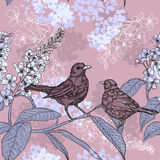 Spring pattern with birds on a blooming branch