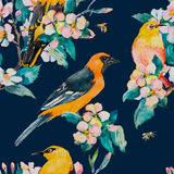 Spring pattern. Flowering branch. Oriole and White-eye bird watercolor pattern. Bees,wasp. Watercolor. Vector. Royalty Free Stock Images