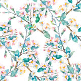 Spring pattern.Flowering branches. Watercolor. Vector. Royalty Free Stock Photos