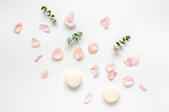 Spring pattern with macaroons and flower in soft light top view Royalty Free Stock Photos