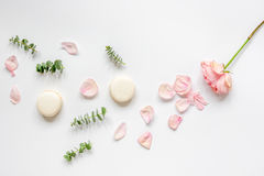 Spring pattern with macaroons and flower in soft light top view Royalty Free Stock Image