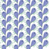 Spring pattern Royalty Free Stock Photo