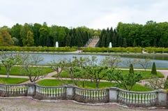 Spring in Petergof park Stock Image