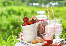 Spring picnic with strawberry Stock Photography