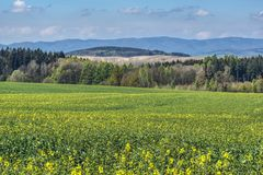 Spring piedmont landscaper, when the green has different shades. Spring piedmont landscape with fields and trees with developing leaves of various shades of stock photos