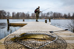 Spring pike fishing Stock Images