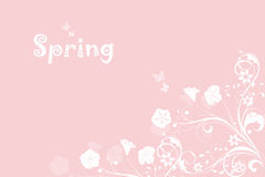 Spring Pink Background Stock Photo