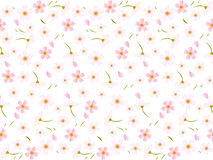 Spring pink cherry blossoms background Stock Photos