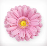 Spring pink flower, vector icon Stock Photography