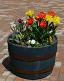 Spring Planter Barrel Stock Images