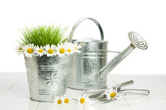 Spring Planting Stock Images
