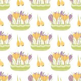 Spring planting flowers seamless pattern Illustration pots crocuses leaves flowers bulbs Planting background. Spring planting flowers Hand drawn cute spring royalty free illustration