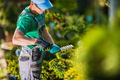 Spring Plants Trimming Work Royalty Free Stock Image