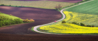 Spring plowed field with road and flowers. Spring plowed agricultural field background with road and flowers of rape, South Moravia, Czech Republic. With red car Stock Photos