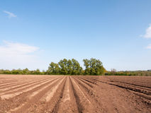Spring plowed field waiting for seed to be sown and crops grown Royalty Free Stock Photography