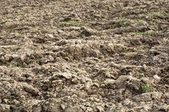 Spring plowed land for planting crops. Field Stock Photos