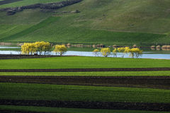 Spring plowing land near lake. Spring plowing land near a lake in spring Royalty Free Stock Image