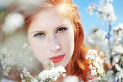 Spring portrait. Portrait of beautiful redheaded girl in spring Stock Photos