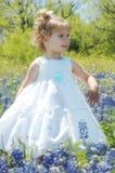 Spring Portrait royalty free stock photo