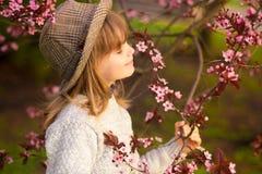 Spring portrait, adorable little girl in hat walk in blossom tree garden. On sunset stock photography