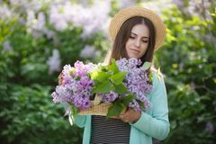 Spring portrait of a beautiful woman outdoors in the park, among the bushes blooming lilac. Young beautiful woman enjoying the smell of blooming lilac on a sunny royalty free stock photo