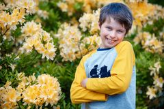 Spring portrait of cute attractive 10 year old boy posing in the garden next to blossoming yellow Rhododendron royalty free stock photos