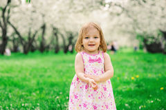 Spring portrait of cute little toddler girl in blue jeans dress walking in blooming park Royalty Free Stock Photography