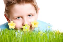 Spring portrait of little boy Royalty Free Stock Images
