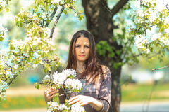 Spring portrait. Young beautiful white girl in a brown sports suit stands near blossoming branches of apple trees in the garden. Royalty Free Stock Photo