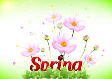 Spring positive postcard for congratulations with beginning of spring Stock Photography