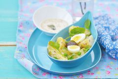Spring potato salad with eggs Royalty Free Stock Images