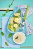 Spring potato salad with eggs Stock Image
