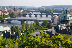 Spring in Prague. Spring view on Prague bridges and vltava river, Strakova akademie building on right side of the photograph is the residence of czech government Stock Photos