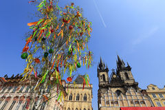 Spring Prague gothic Tyn Cathedral Stock Photos