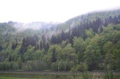 Spring on Prahova Valley Royalty Free Stock Photos